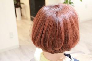 カラーをした髪